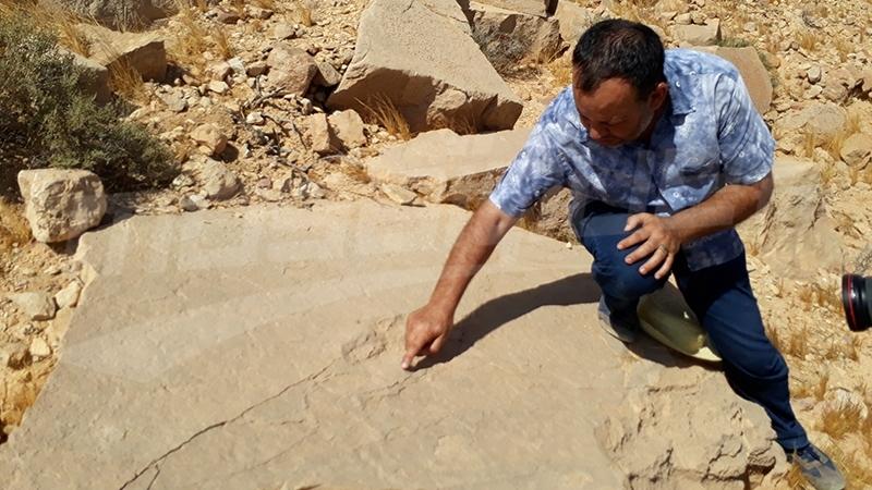 تطاوين: اكتشاف آثار أقدام ديناصور بمنطقة قصر المرابطين