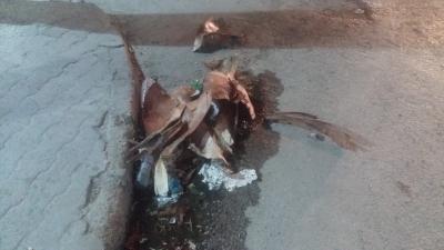 Les traces de la tempête qui a frappé la ville de Sousse