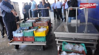 Marché du Gros : Saisie de six camions de poissons venus de Libye