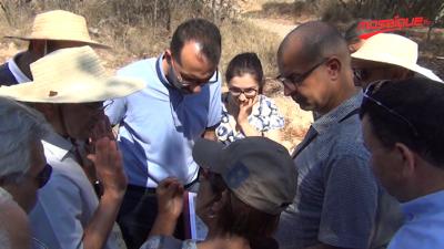Une route traversant la forêt de Rades : Les avis divergent entre soutien et rejet