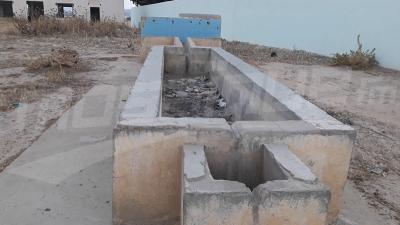 Jendouba: les habitants de la région de Maala, privés d'eau potable