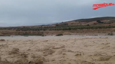 فيضان وادي سليانة بسبب الأمطار الغزيرة