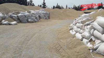 """Des ''montagnes"""" de céréales au bord de la route"""