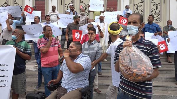 Les agriculteurs d'El Jerid appellent Saïed à sauver la récolte des dattes