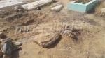 Affaire de la mère infanticide: trois cadavres exhumés