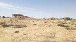 Ras El Ain: l'oasis se transforme en désert