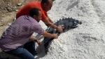 Kasserine : Tentative de contrebande de pneus déjouée