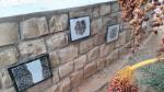 Bir Lahmer: les enfants décorent les murs de leur  école
