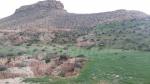 تطاوين: 'صدور' و'ندور' مناطق تراثية تؤرخ لمختلف الحضارات