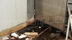 كارثة صحية في سيدي داود: ديدان داخل مخزن لتوزيع الشوارمة واللحوم