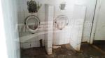Bizerte : le collège de la pêcherie vandalisé