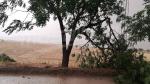 Jendouba inondée par la pluie