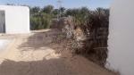Ghidma : Une école au cœur de l'oasis, sans eau