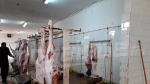 Situation catastrophique à l'abattoir municipal de Kébili