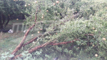 Une tempête cause des dégâts à Kairouan