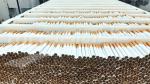 La régie nationale du tabac et des allumettes (RNTA) en images